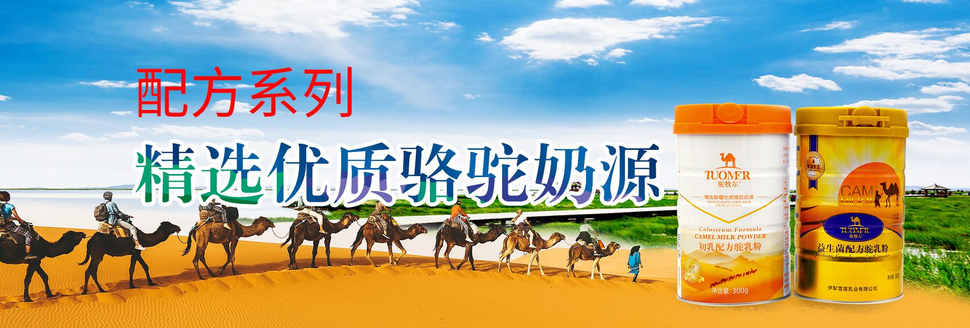 骆驼奶粉厂家